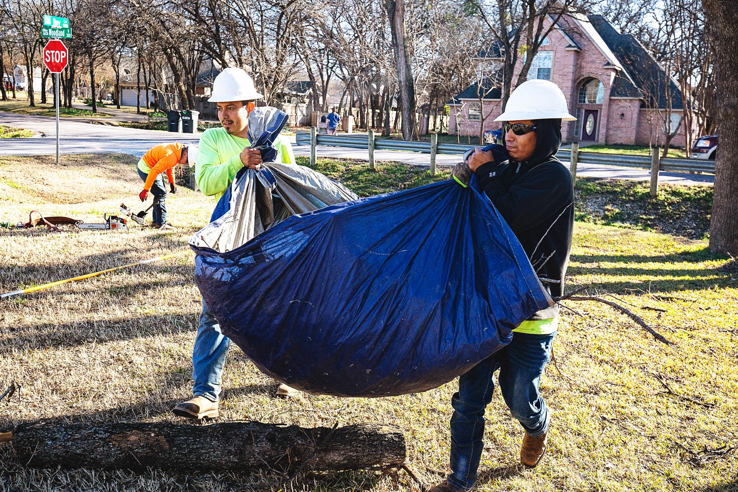 Tree Trim Service in keller Texas (4 of 49).jpg