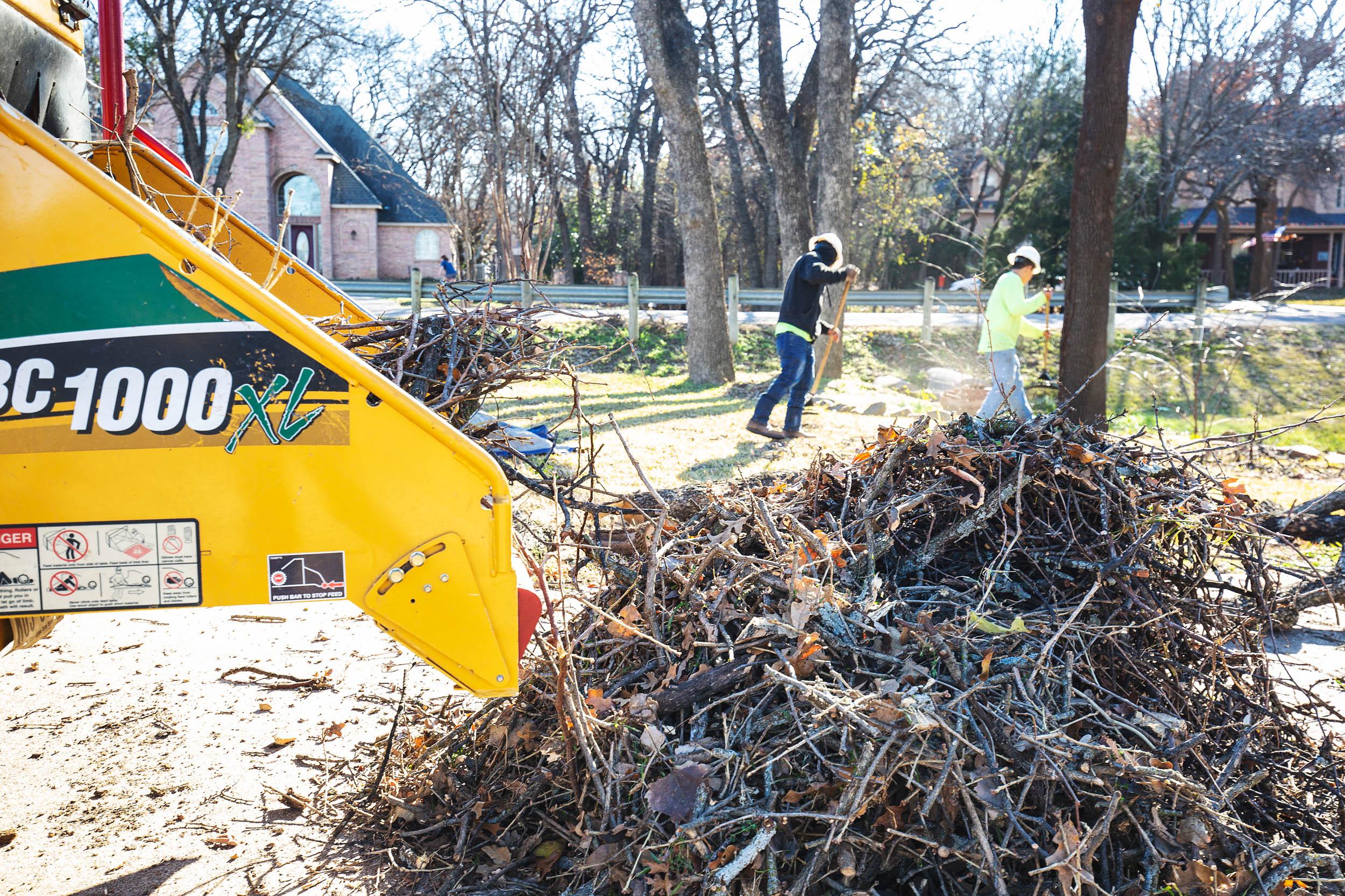 Tree Trim Service in keller Texas (5 of 49).jpg