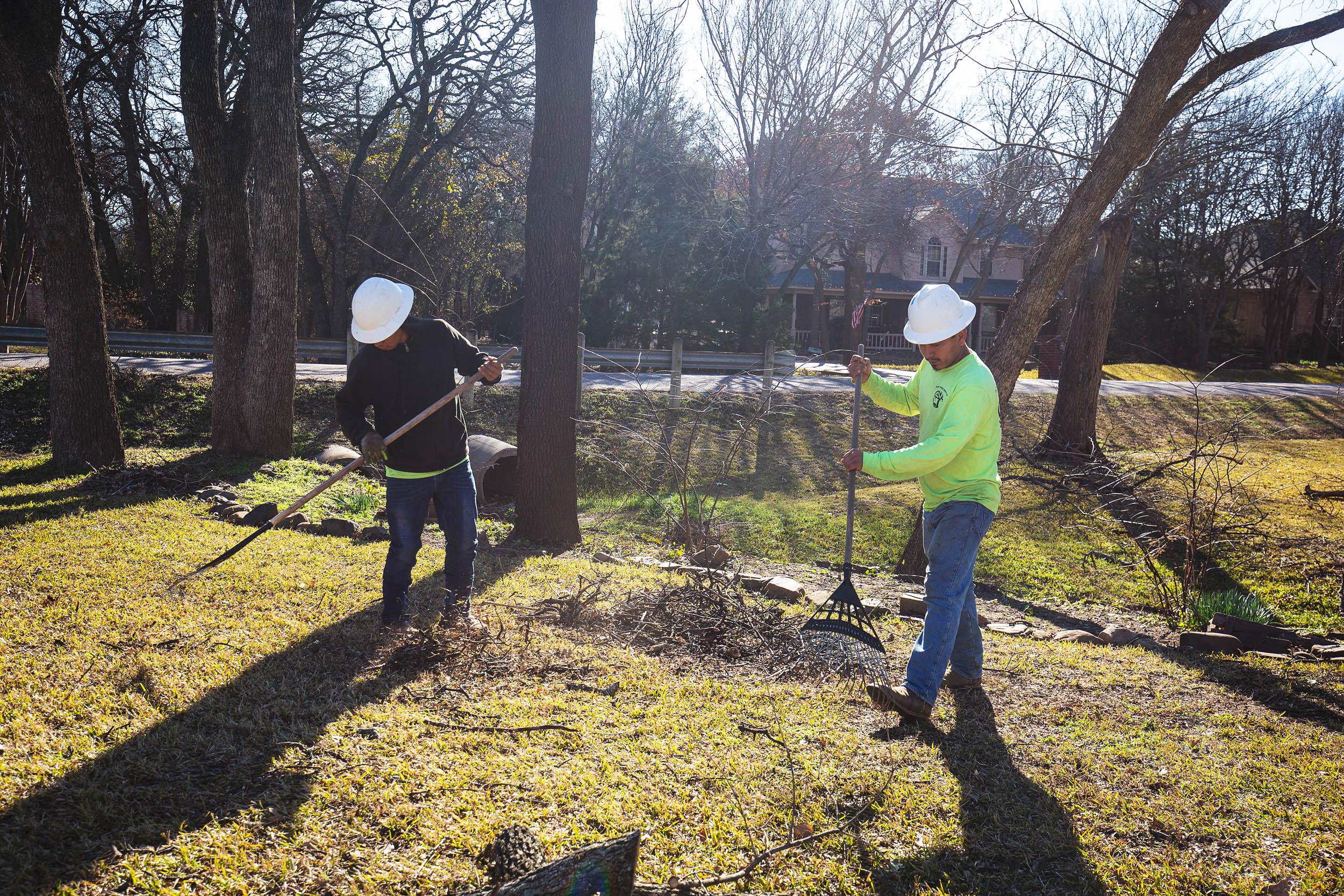 Tree Trim Service in keller Texas (9 of 49).jpg