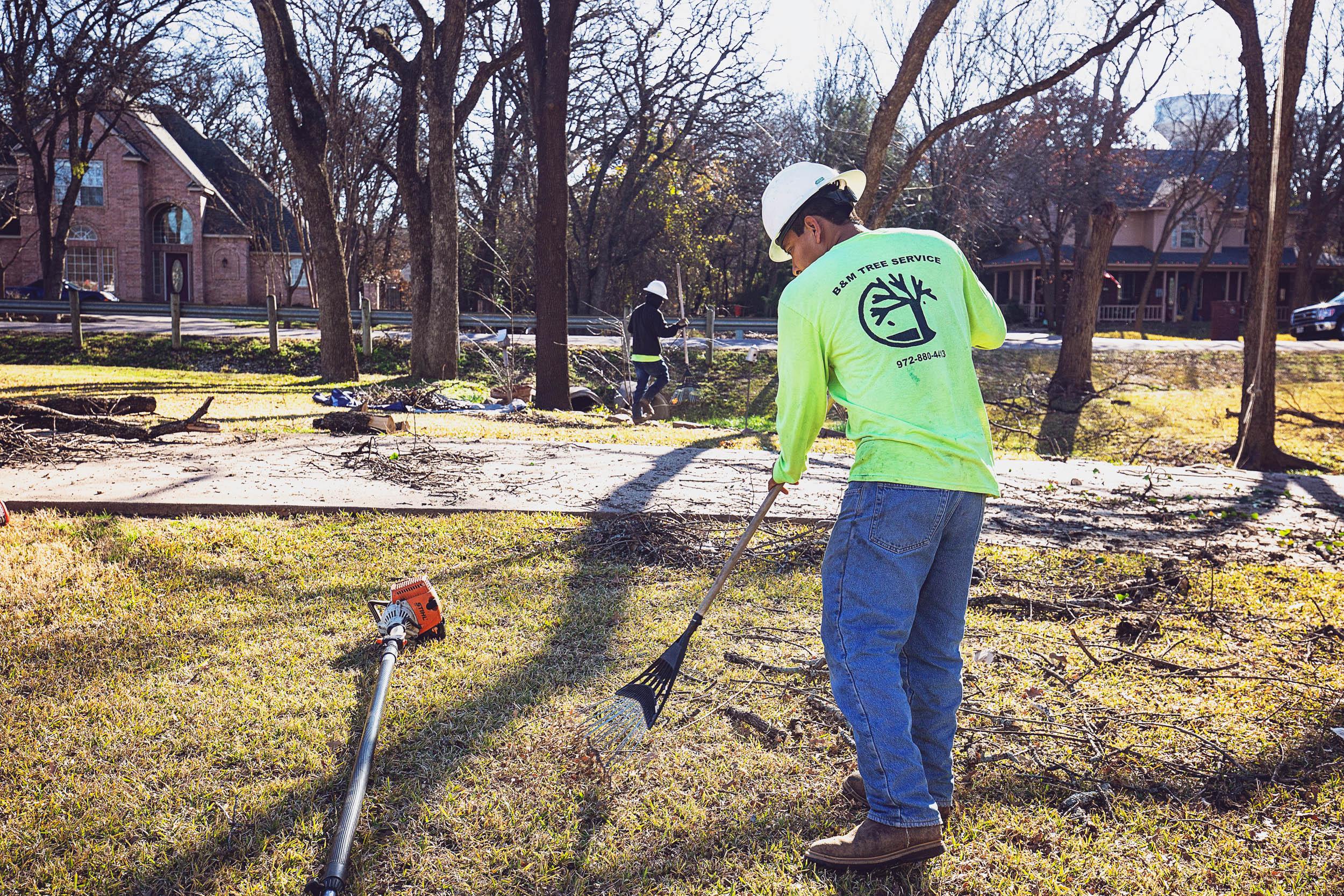 Tree Trim Service in keller Texas (12 of 49).jpg