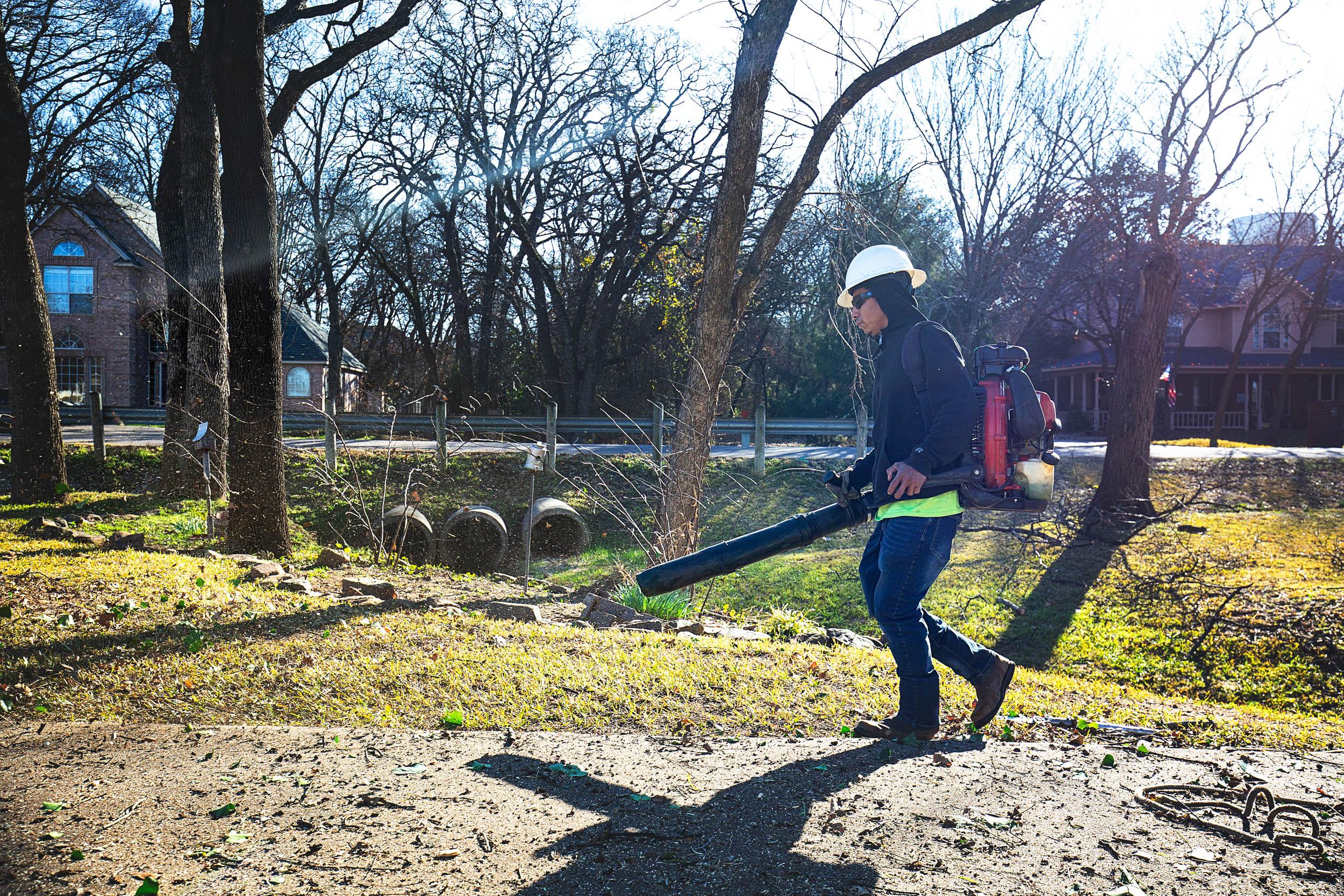 Tree Trim Service in keller Texas (18 of 49).jpg