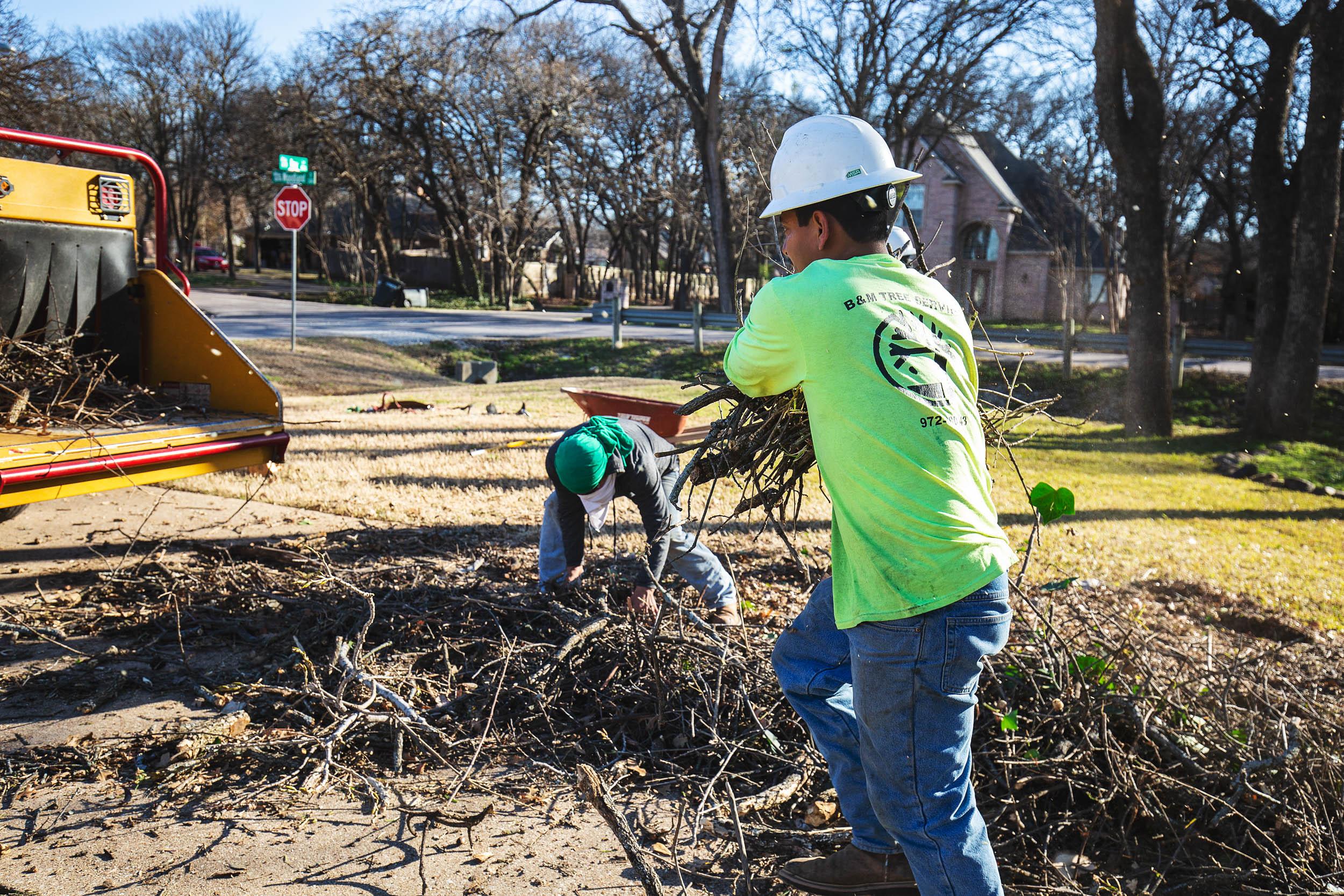 Tree Trim Service in keller Texas (32 of 49).jpg
