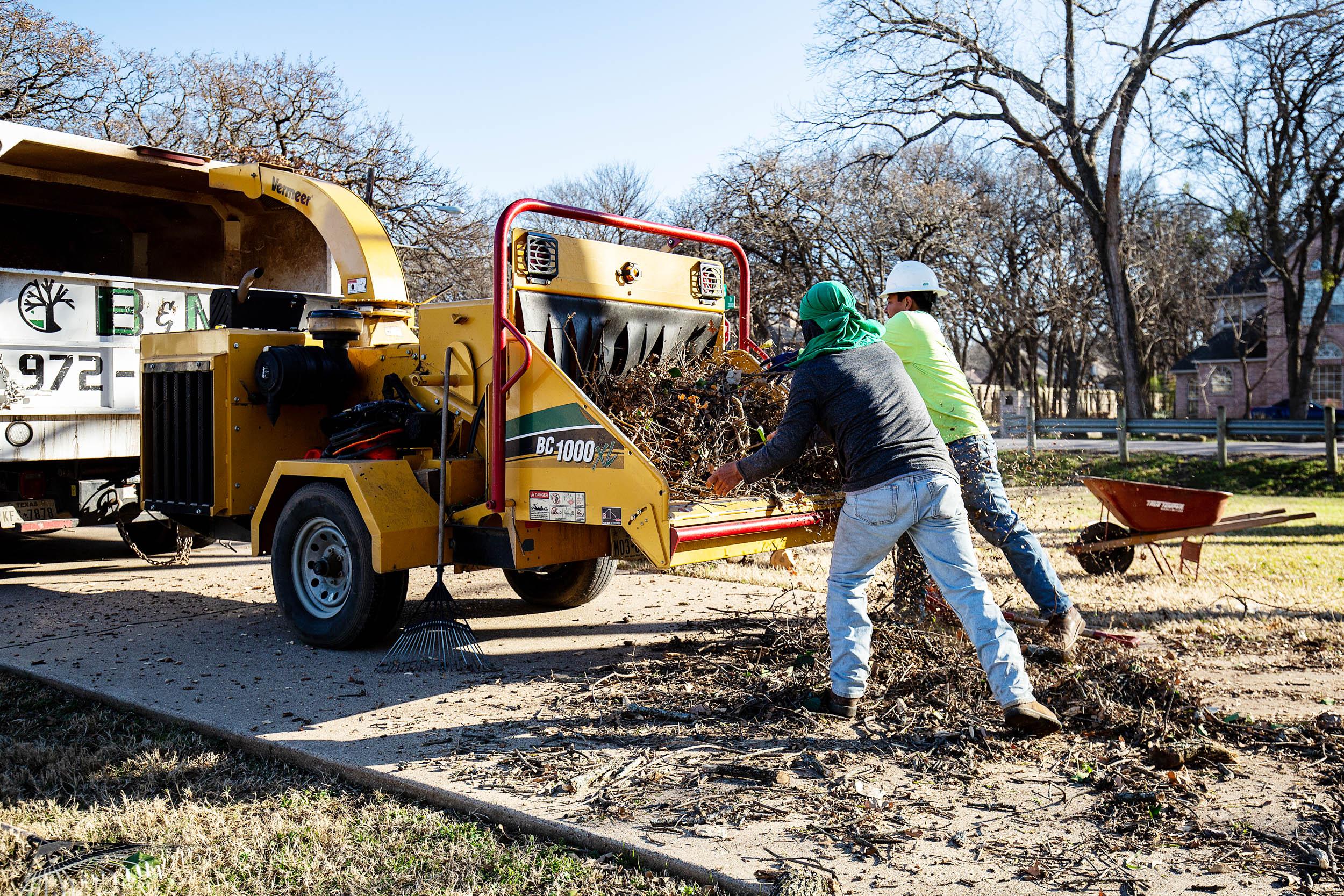 Tree Trim Service in keller Texas (38 of 49).jpg