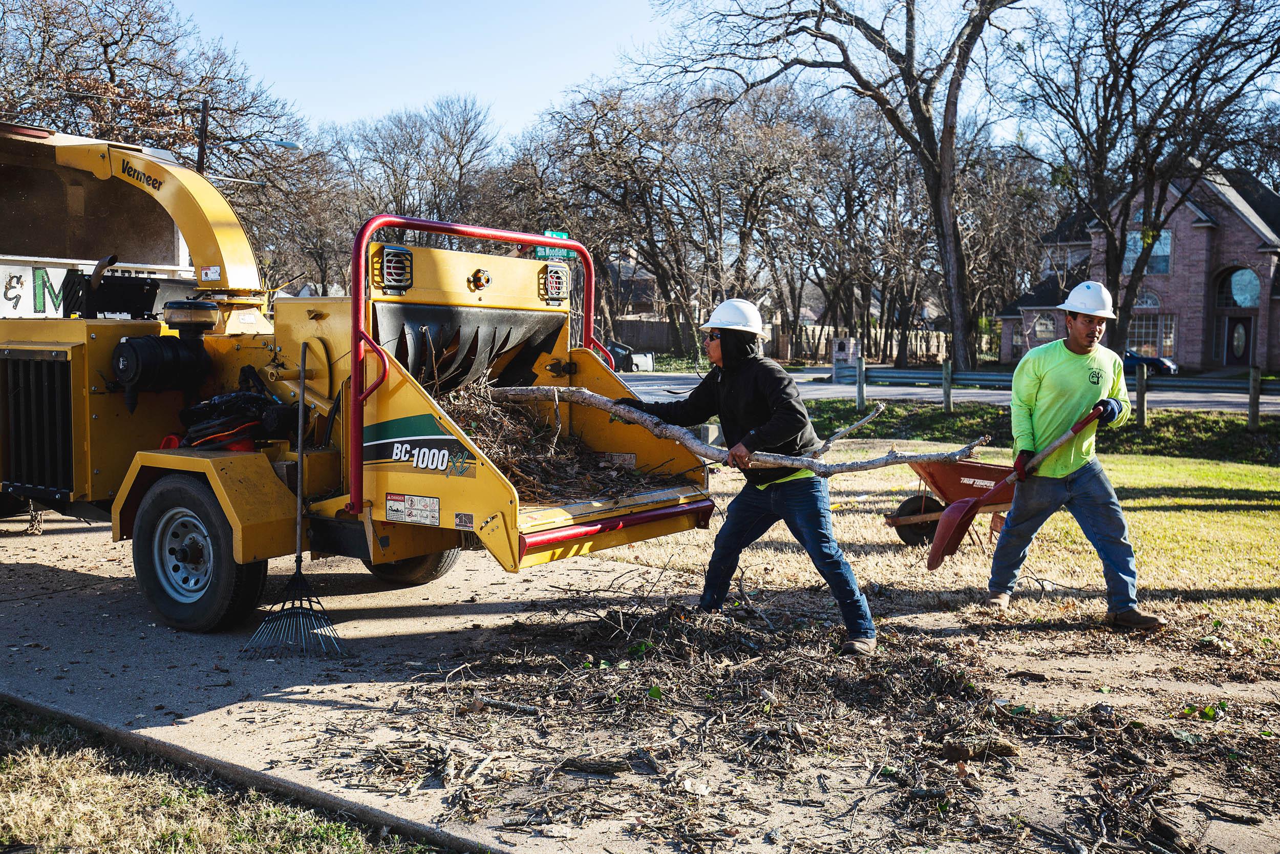 Tree Trim Service in keller Texas (40 of 49).jpg