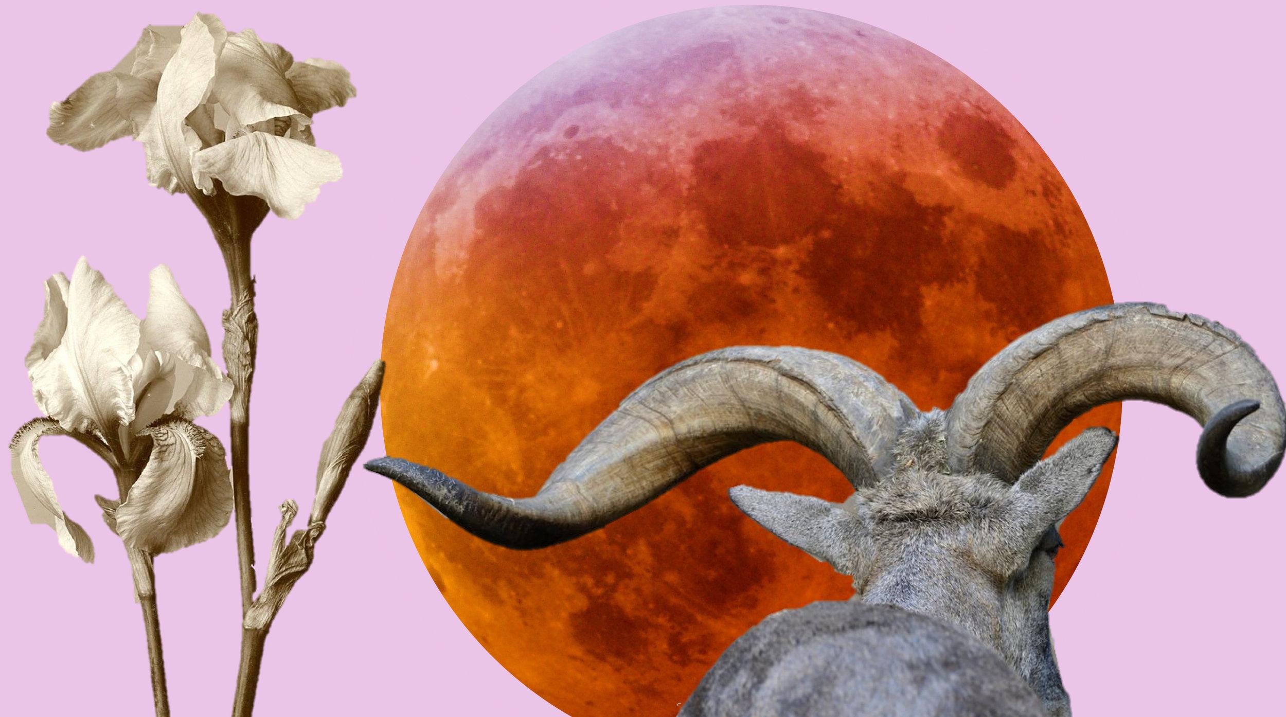 Partial-Lunar-Eclipse-in-Capricorn.jpg