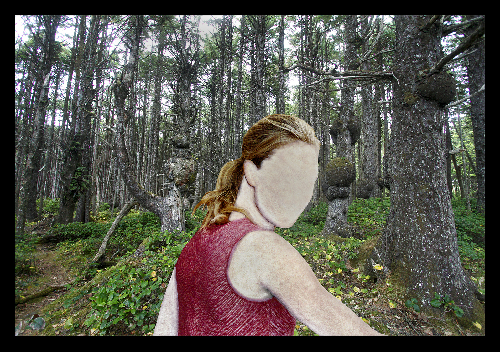 """human Nature"" Woods Walk"