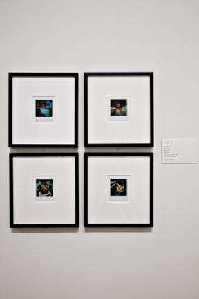 Sex-70's Group, Polaroid Years