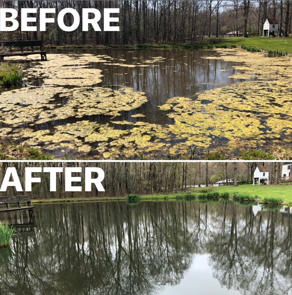 Pond & Lake Management - Join our customized pond and lake management programs! No cookie cutter programs here! Every pond is different, so our programs should be too.