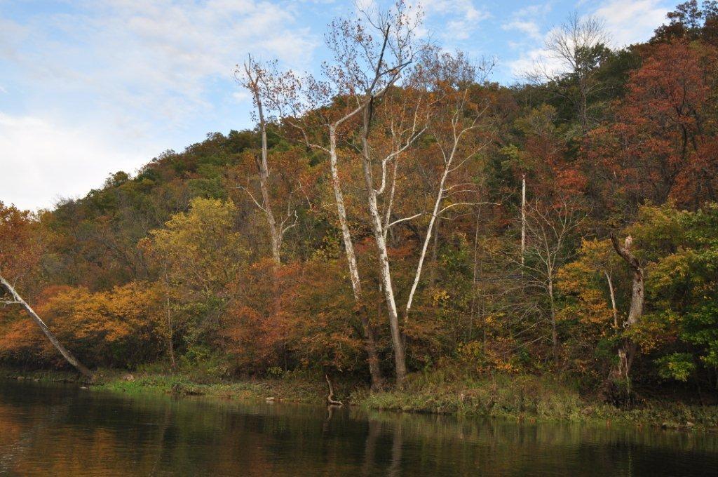 Fall 2014  and cabin 016.jpg