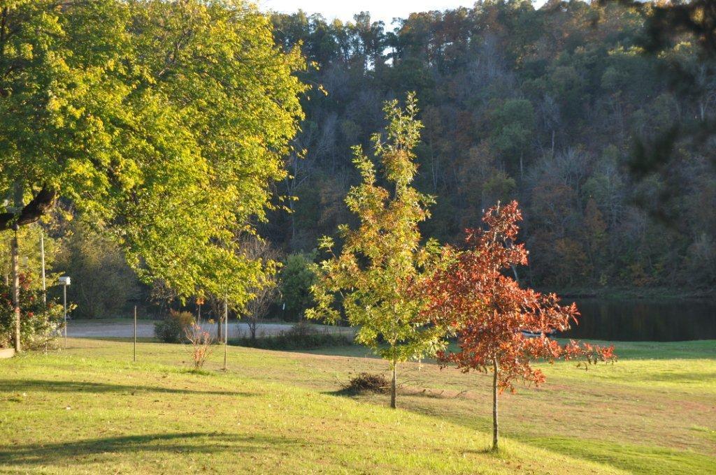 Fall 2014  and cabin 079.jpg