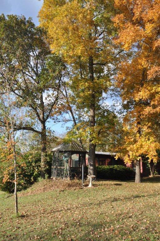 Fall 2014  and cabin 094.jpg
