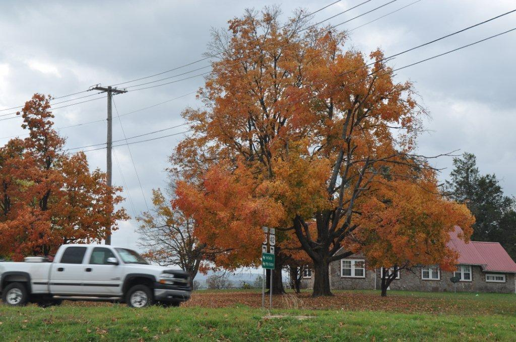 Fall 2014  and cabin 115.jpg