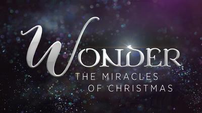 Christmas wonder 1.jpg