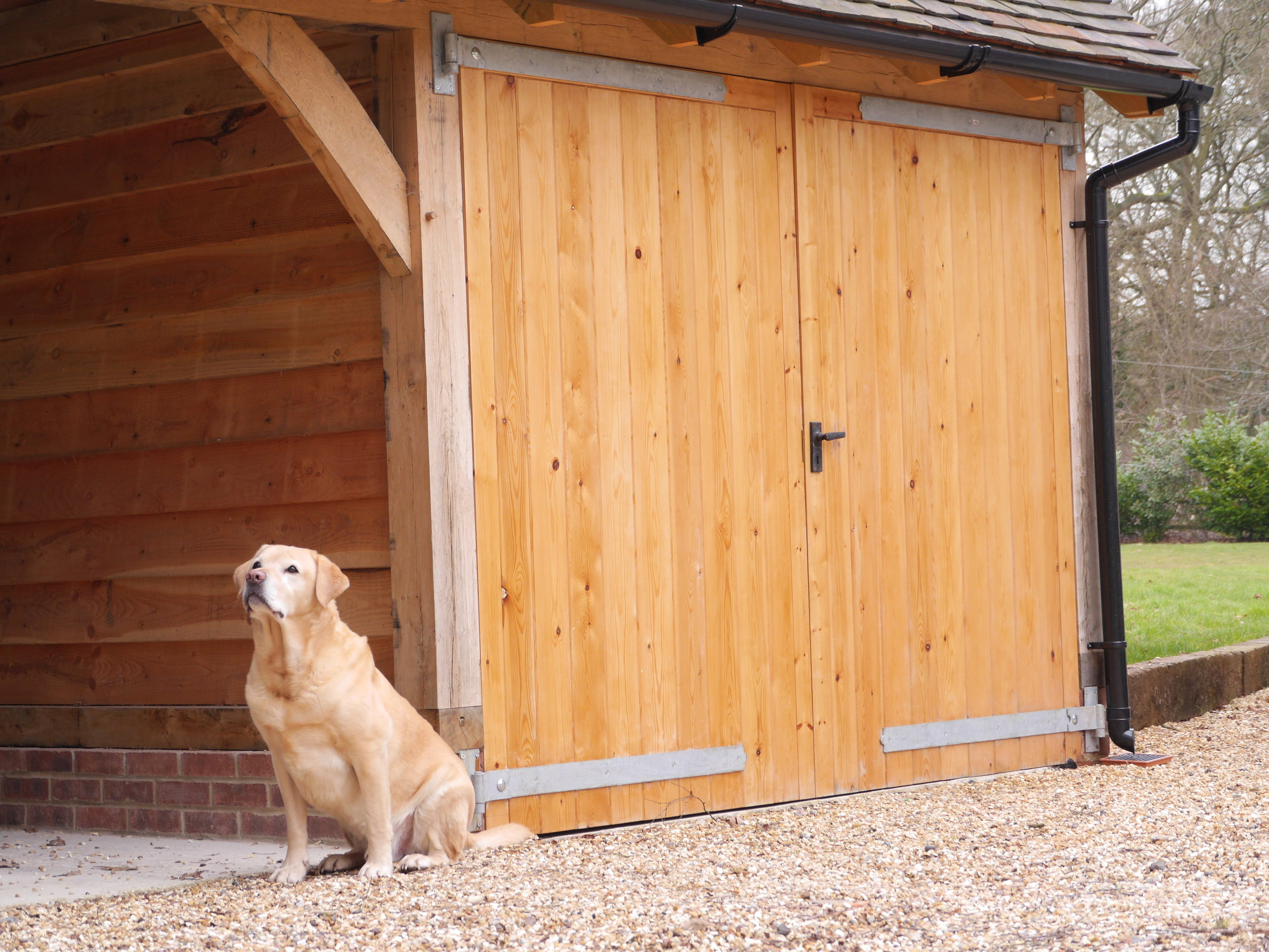 dog sat in front of oak framed garage