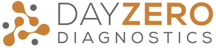 DAYZERO_LOGO_RGB_gray.png