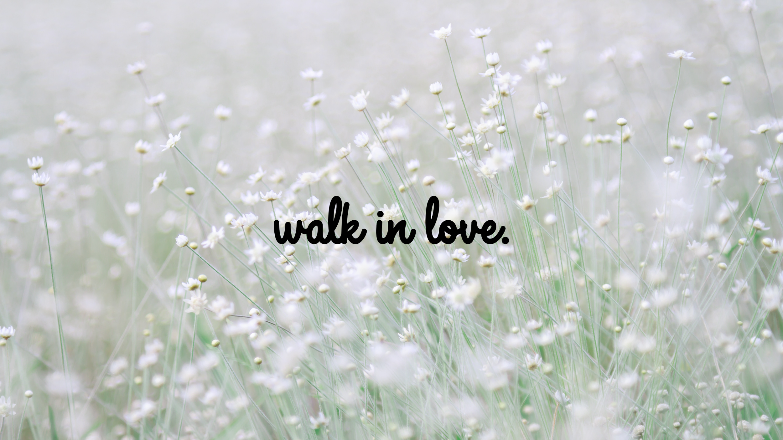 walkinlove-imac.png