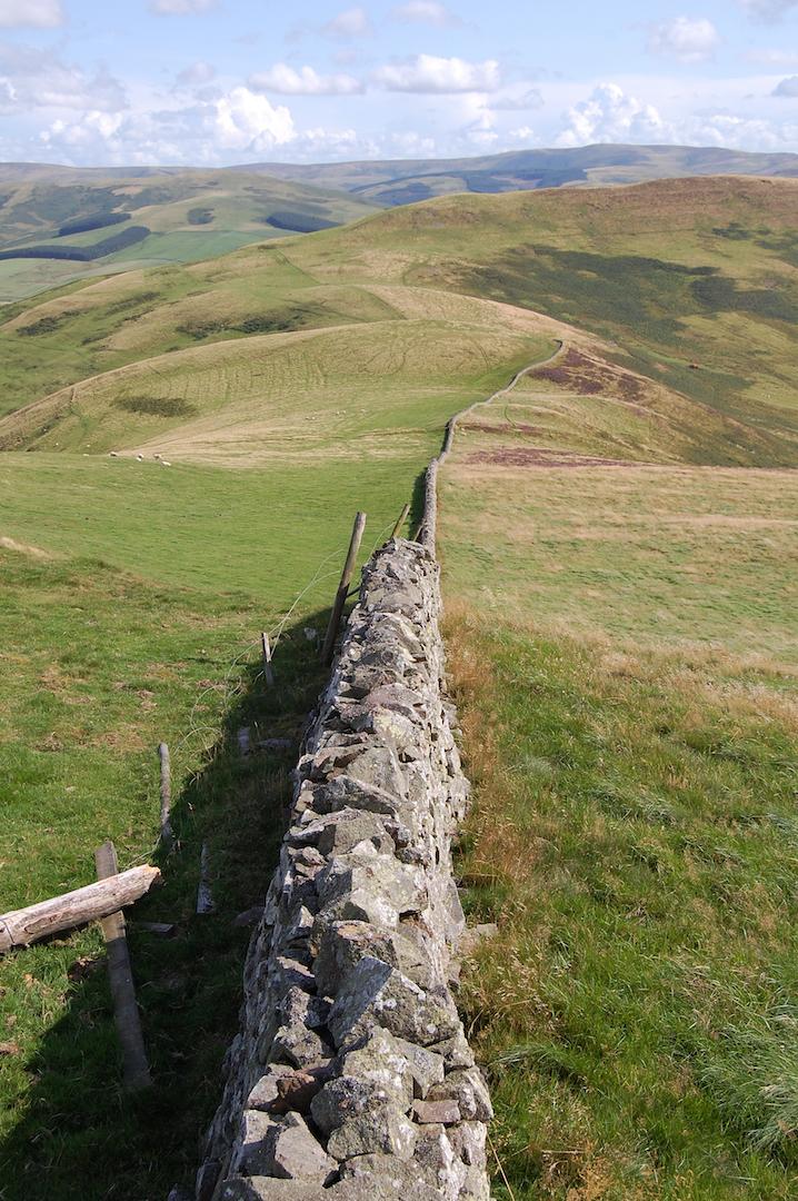 stone wall st cuthberts way.jpg