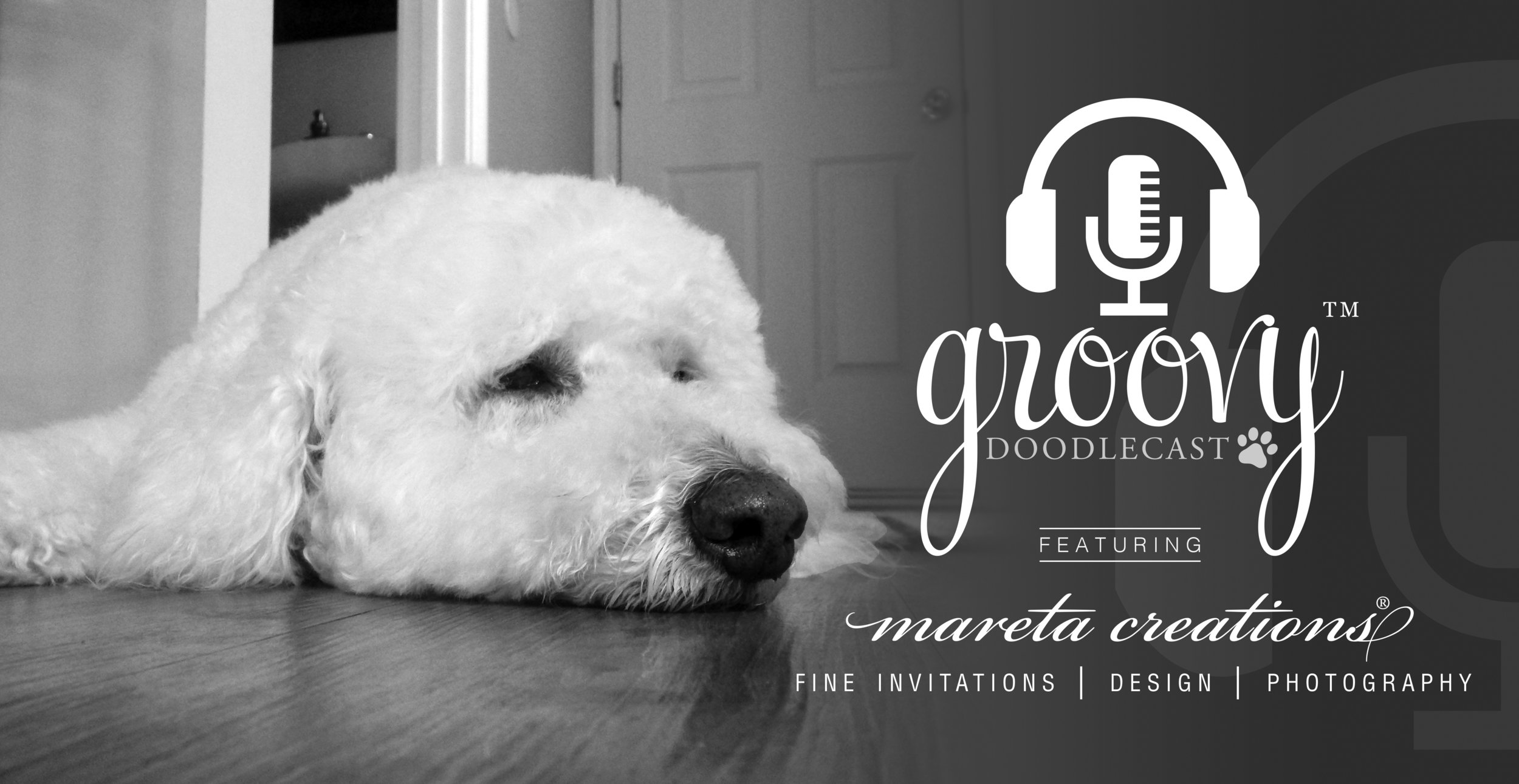 Visit  www.GroovyGoldendoodles.com  to hear Doodle Mom Cathy Bennett's first Groovy DoodleCast™ interview with Makya Renée Little of Mareta Creations.