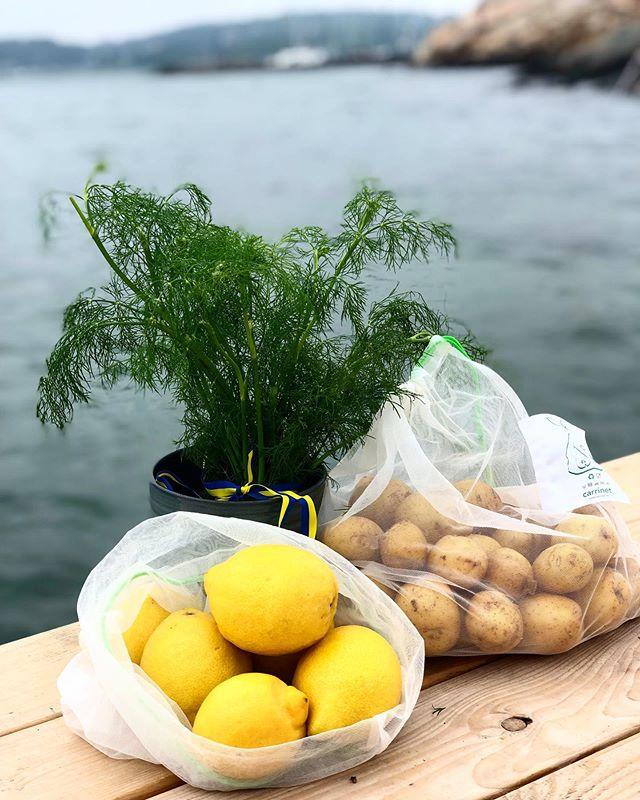🇸🇪🍓 Happy Midsummer! 🍓🇸🇪 #notosingleuseplastic #reduceandreuse#ocean #fruitandveggies #midsummer #midsommar #midsummereve#strawberries #svensksommar #lemons #potatoes #färskpotatis #dill #zerowastejourney#veggiebag #veggio#carrinet#world#nature #savetheearth#makeyourchoice #zerowaste#dontwaste#reuse #ecofriendly#ecofriendlyliving