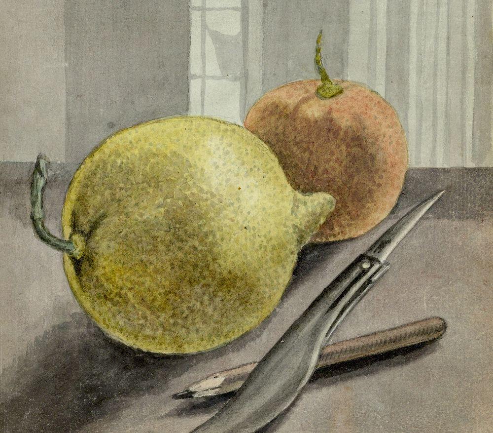 Image: Stilleven met vruchten, mes en potlood., Jan Brandes, 1779 - 1785, Rijksmuseum. Used with permission.
