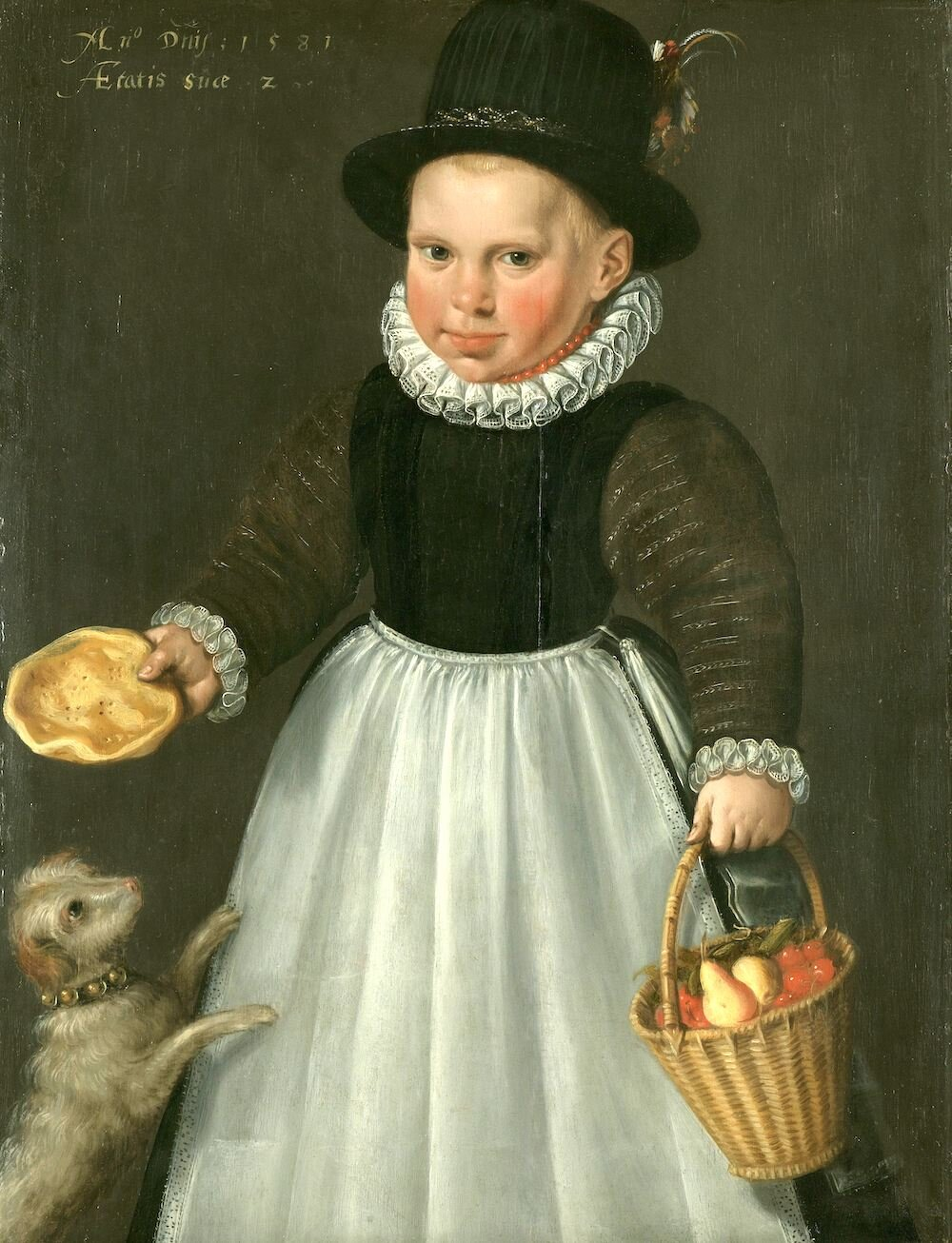 I decided to investigate for myself.  Image:  Portrait of a little Boy, Jacob Willemsz. Delff (I),  1581, Rijksmuseum. Used with permission.