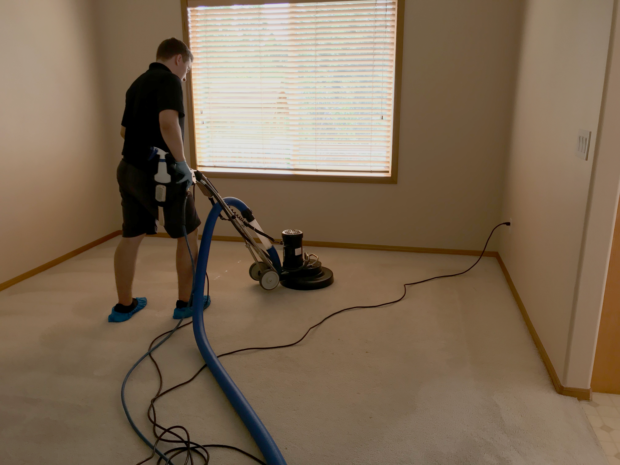 Deep Cleaning Carpet