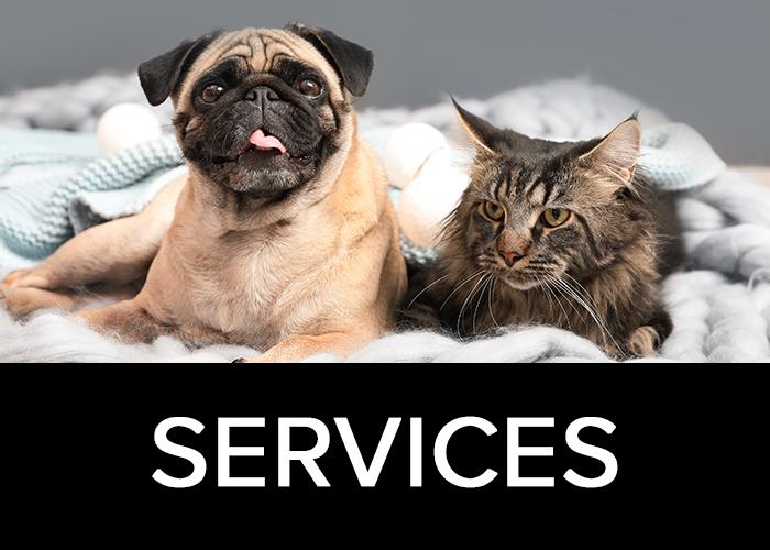 services-box.jpg