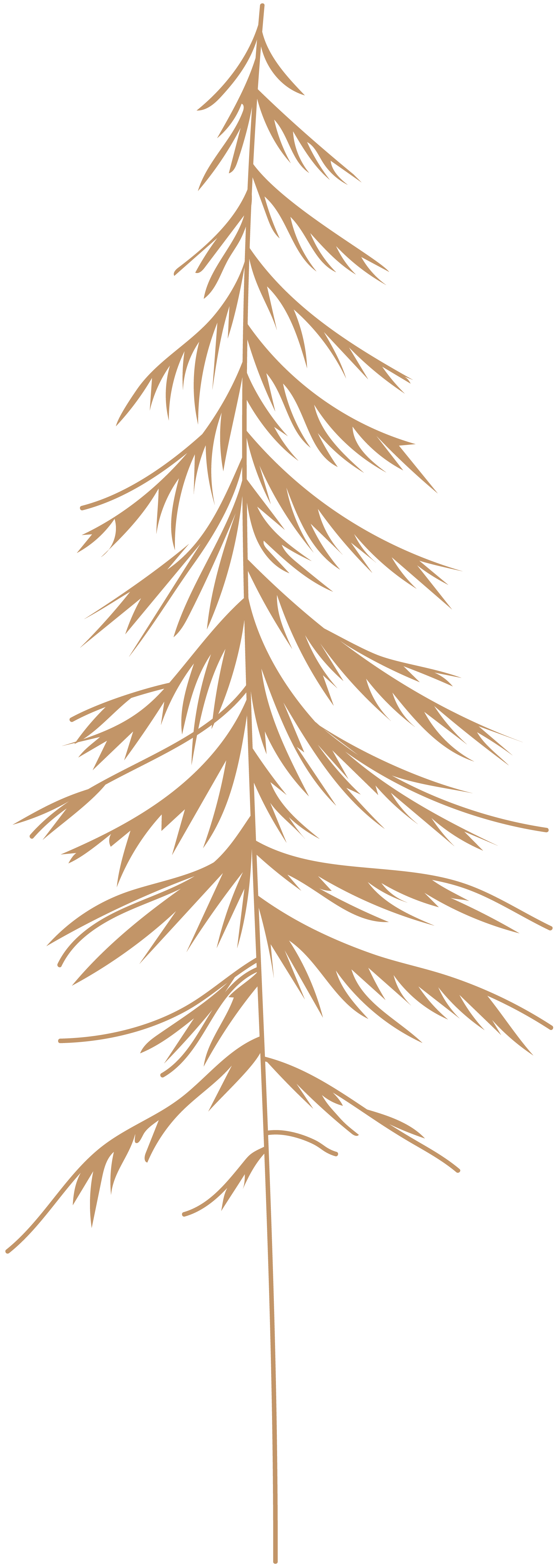 Tree-Color4.png