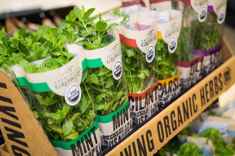living-organics-in-store-900x600.jpg