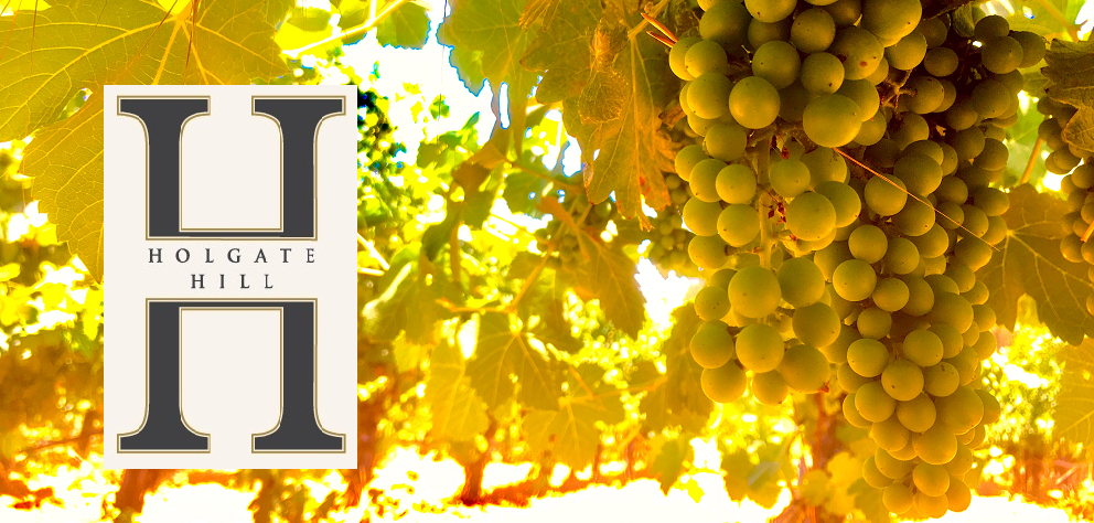 Holgate-Hill-With-Grapes.png