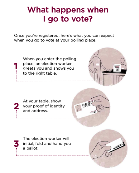 pic 7 what happens when I go vote.png