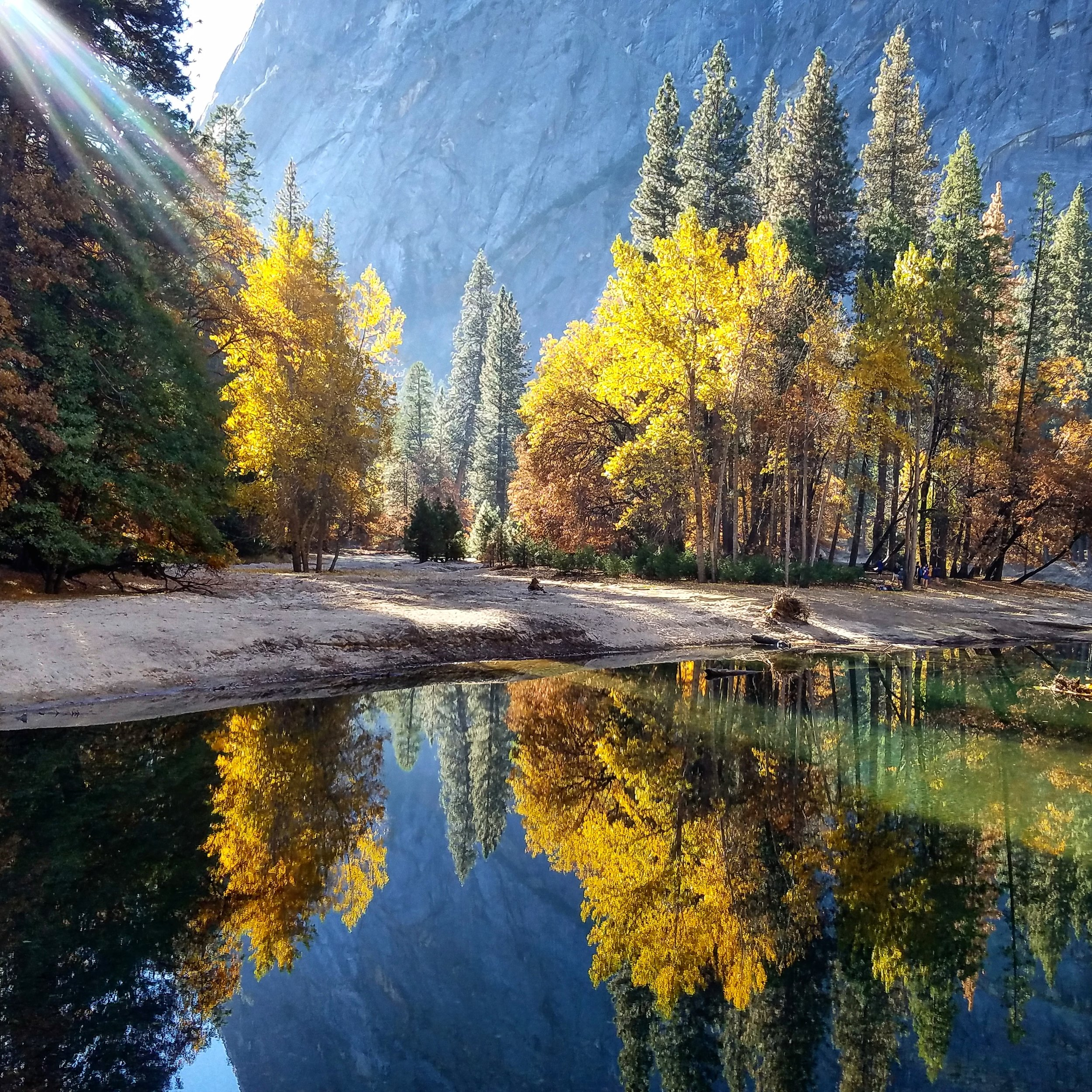 Artist: Cristina Gonzales  Style:Photography SocialSite or website: Optional  The Merced River winds along Housekeeping Camp on a Fall day.