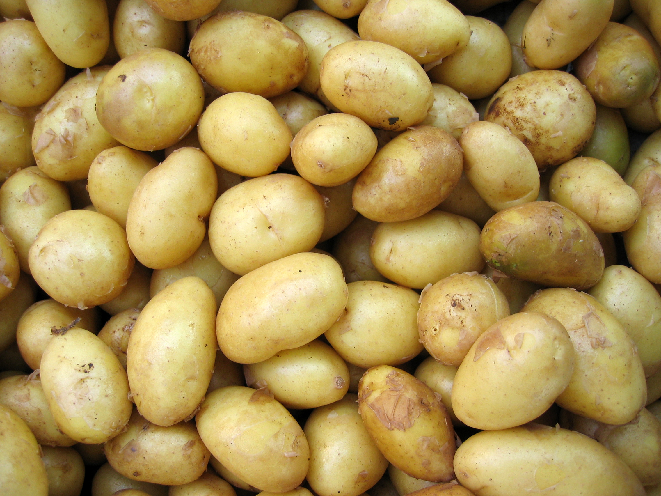 potatoes - Conventional potatoes had more pesticide residues by weight than any other crop.One pesticide in particular, chlorpropham, makes up the bulk of pesticides detected on potatoes.