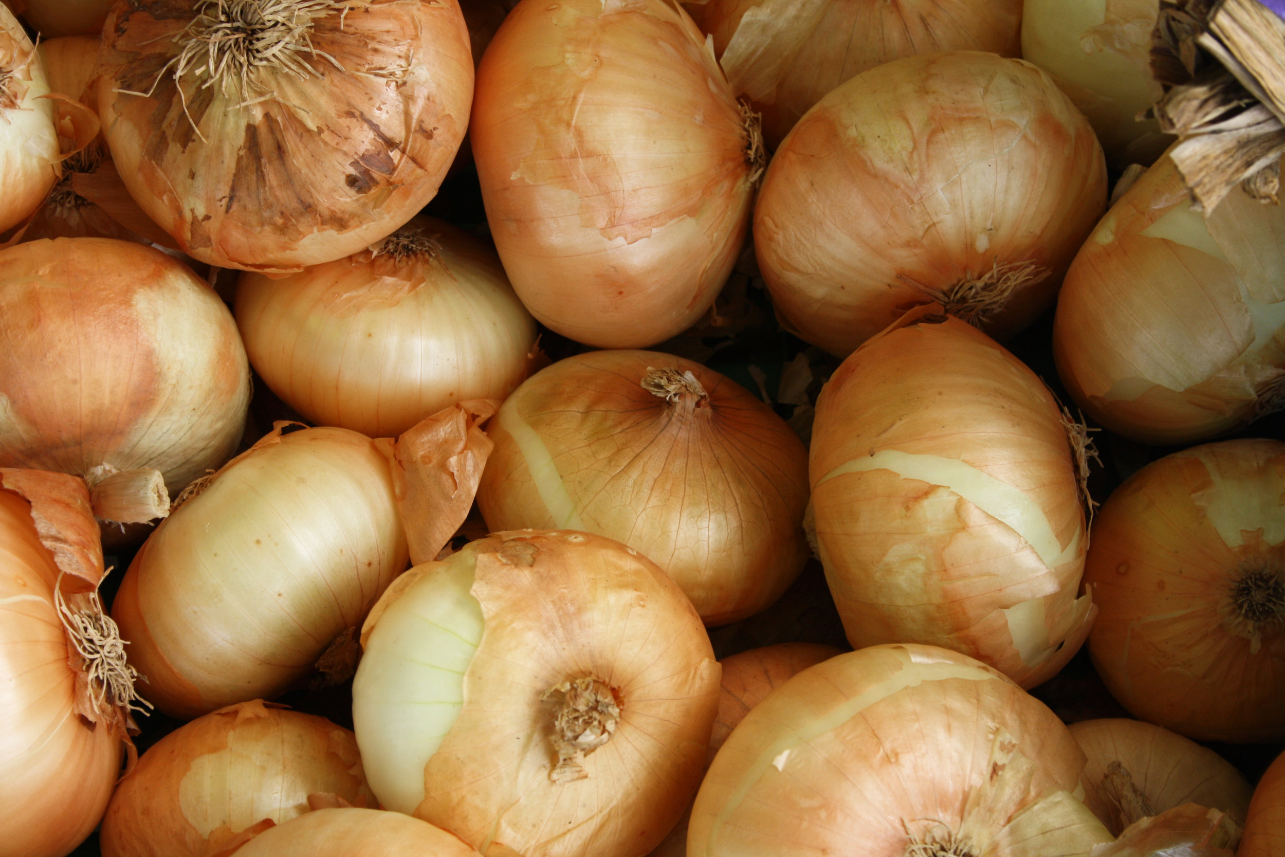 onions - Less than 10 percent of conventional onion samples contained any pesticide residues.No conventional onion samples contained more than three pesticides.