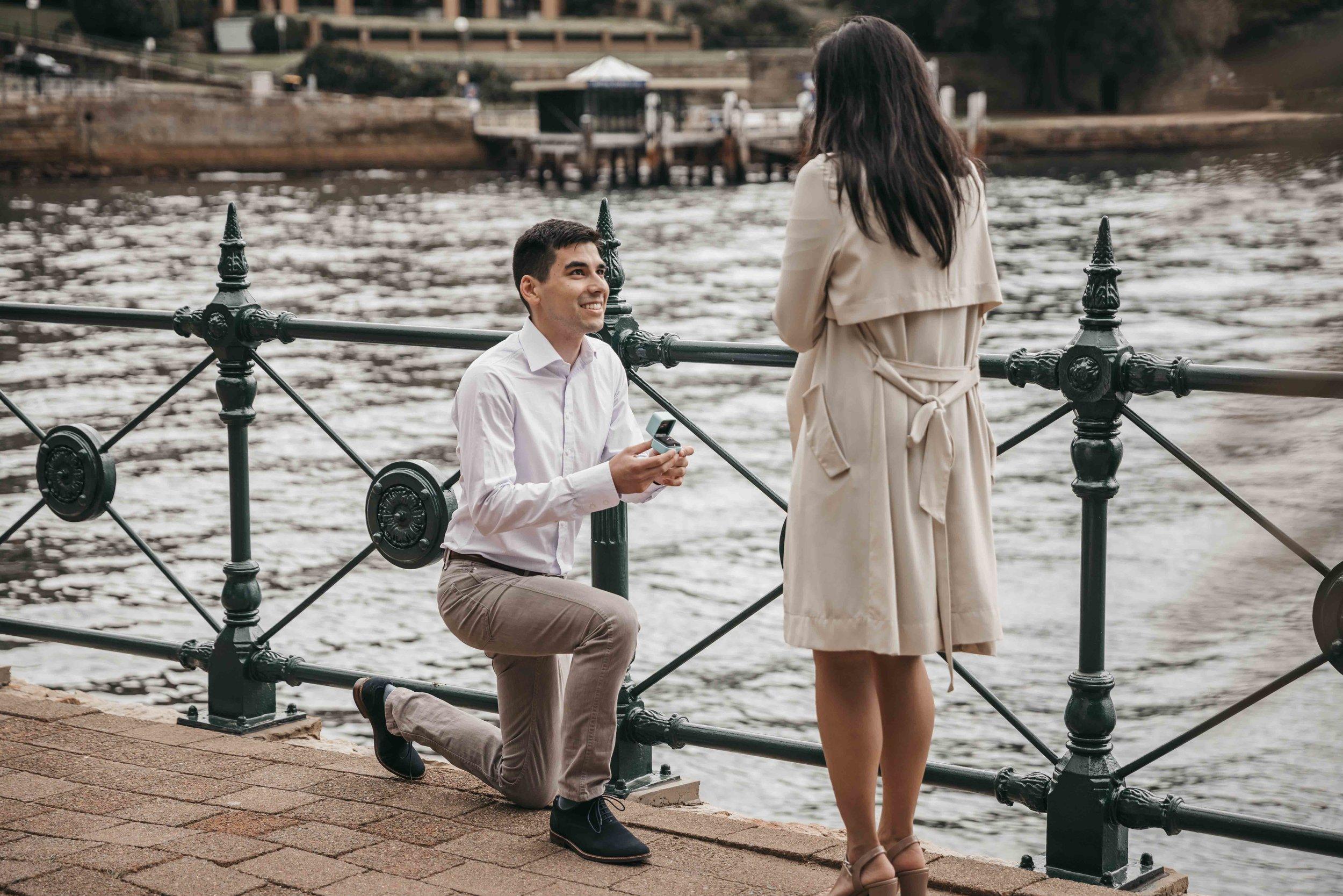 Dani and Vi - Proposal 1.jpg