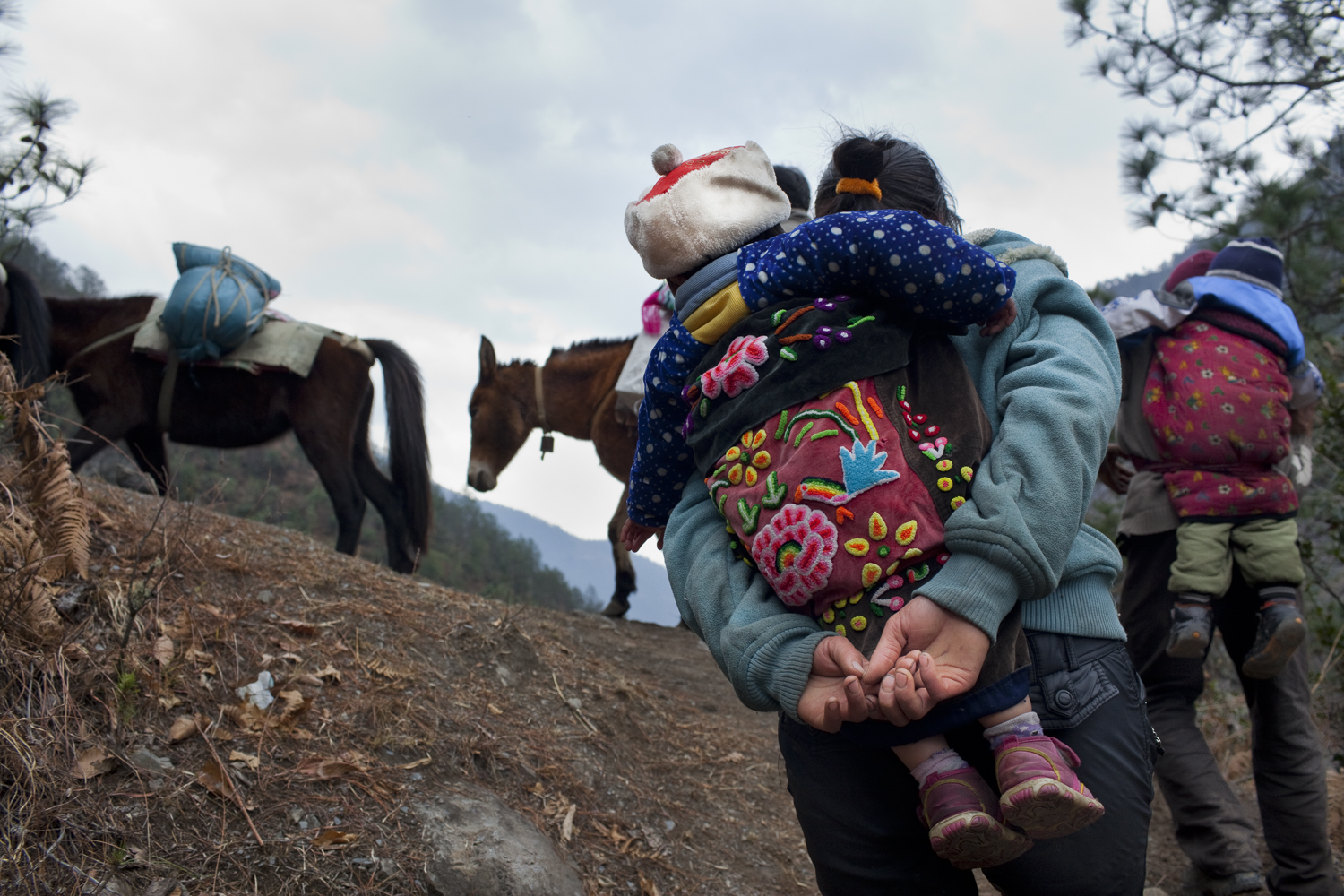 Families on their way back to Baihanluo after celebrating Spring Festival in another village. This village sits on top of a mountain and like Dimaluo is a Catholic Tibetan village. This pack train is bringing supplies up and some are making New Years visits.