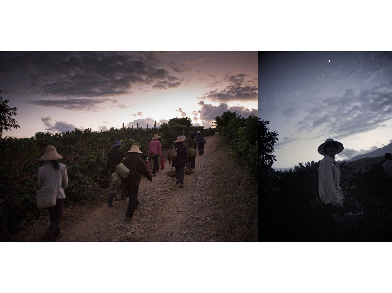Yunnan Night.jpg