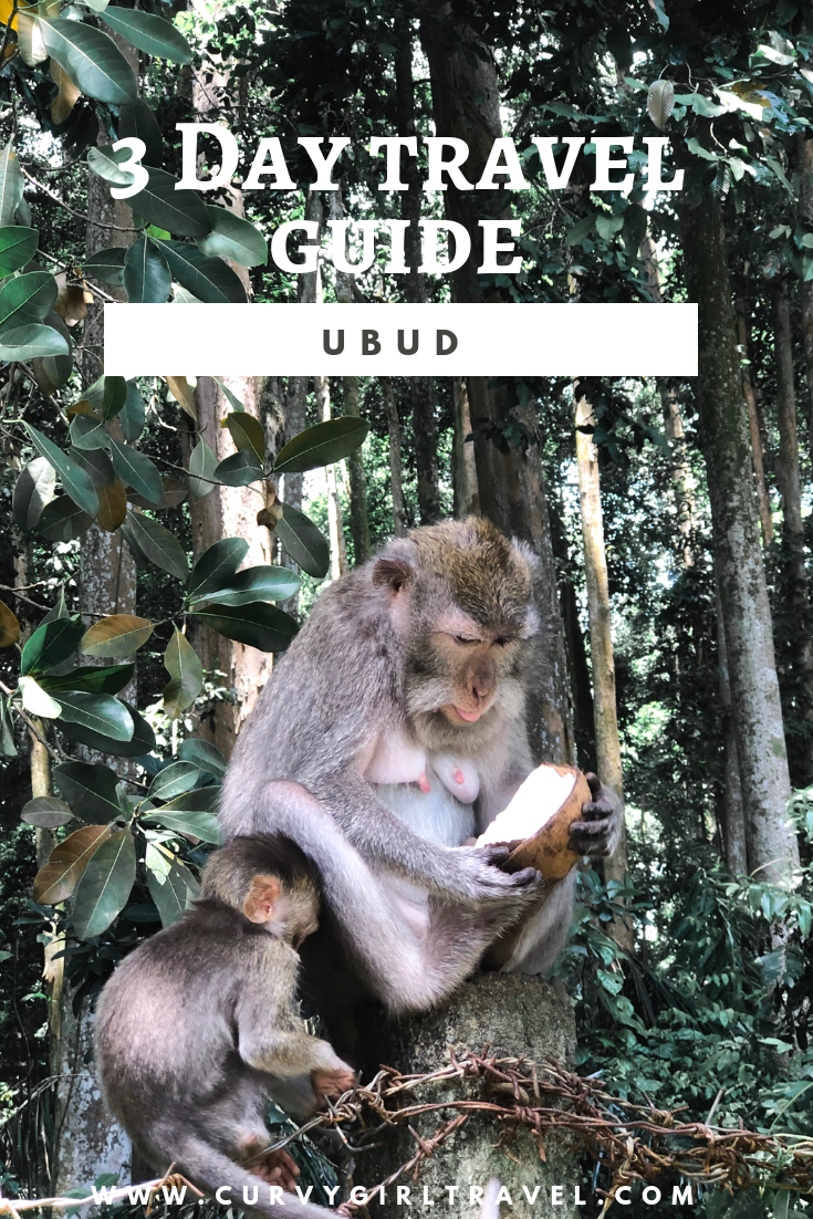ubud guide