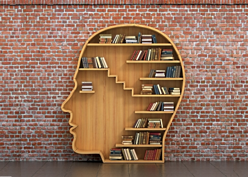 Bookshelf in the shape of head with books on it