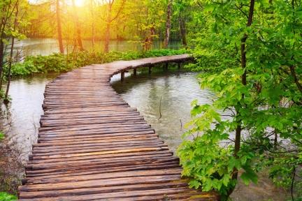 Water path.jpg