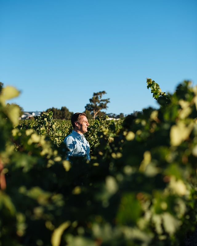 It's not always easy for me to see what people are talking about, so I find it best to immerse myself in it to be able to 'see.' Here I am feeling my way around a vineyard. . . . . . . #motivationalspeaker #motivation #exploring #capetown #hein_wagner #beautifulcapetown #feeling #darkness #staypositive #youcandoit #youarenotalone #Motivationoftheday #motivationiskey #inspiration #love #sunrise #instadaily #instalike #likeforlike #teacher #beautiful #happy #southafrica #blind #picoftheday #life #photography #bestoftheday #earlymorning #vineyard