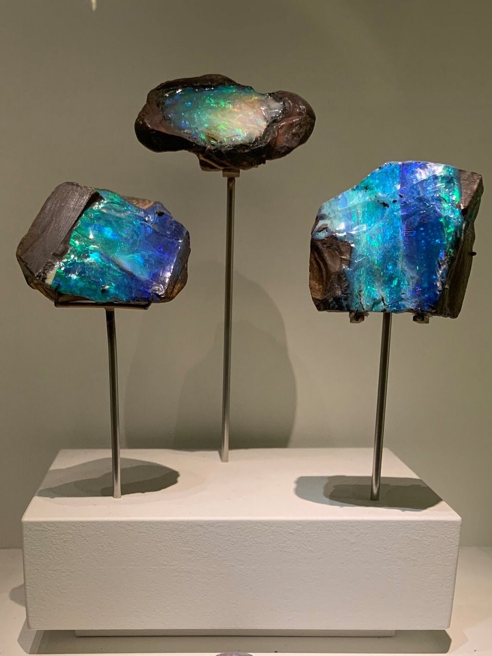Dazzling opals on display
