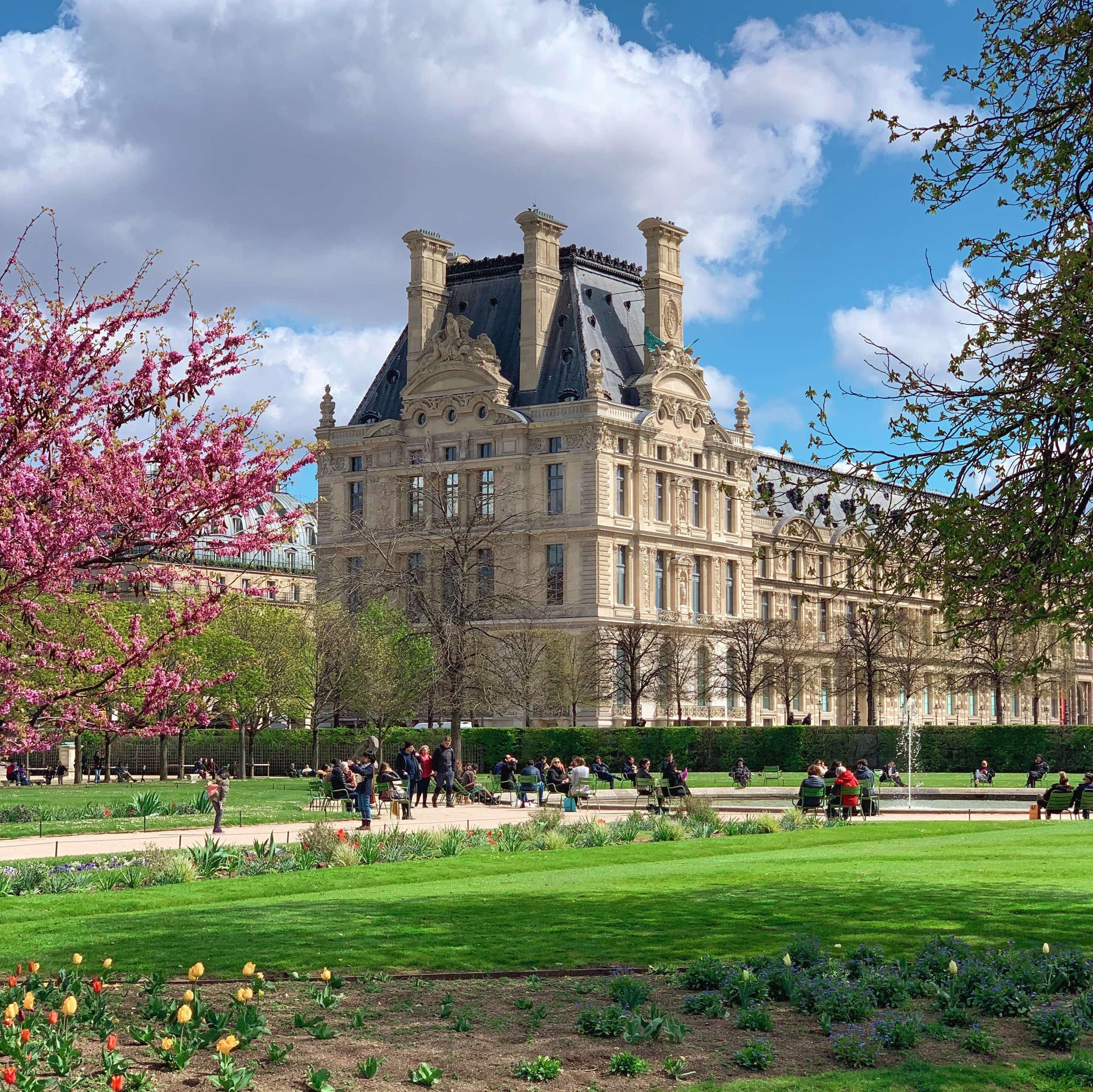 Parisian Spring at J'arden du Tuileries