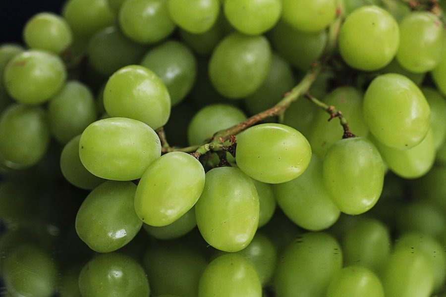 green grapes.jpg