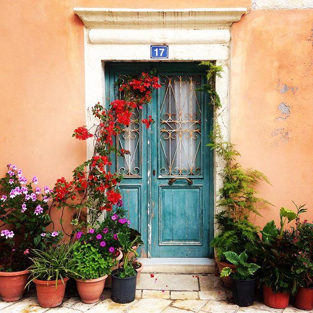 Number 17 🥰 . . . . . #inspiration #backstreets #corfuoldtown #plantpots #colour #studiobrio #garden #gardendesign #landscapedesign #frontdoor #door #holiday
