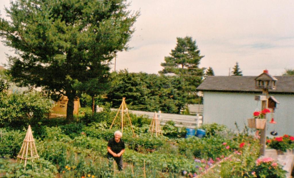 moms-garden-1024x623.jpg