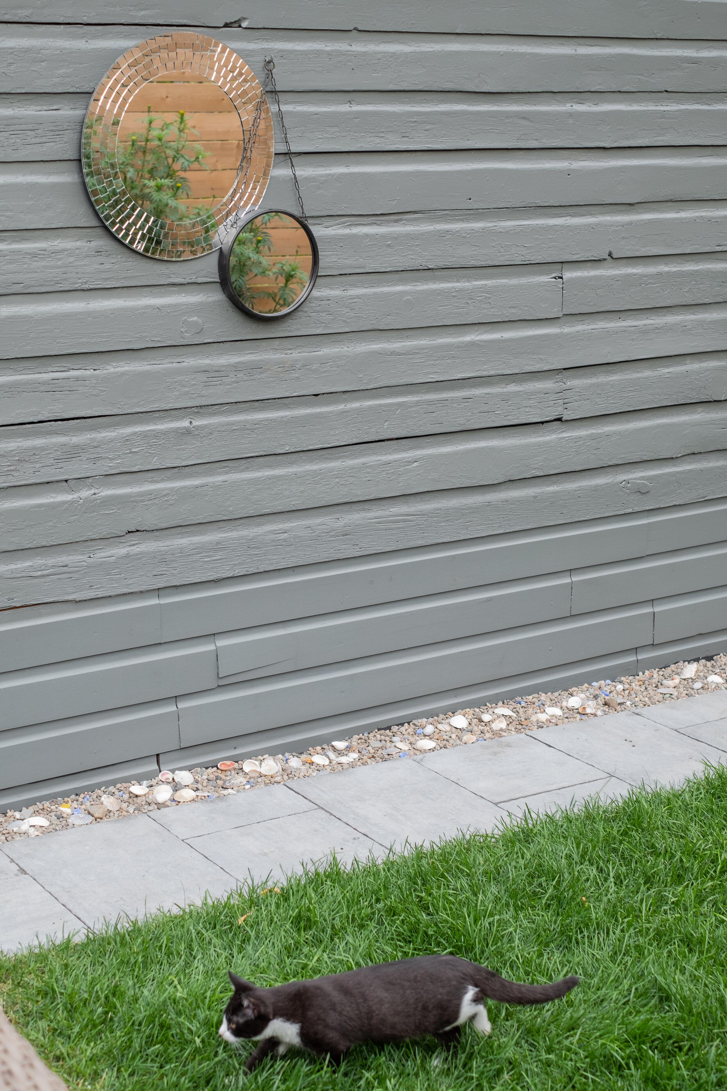 backyard-11.jpg