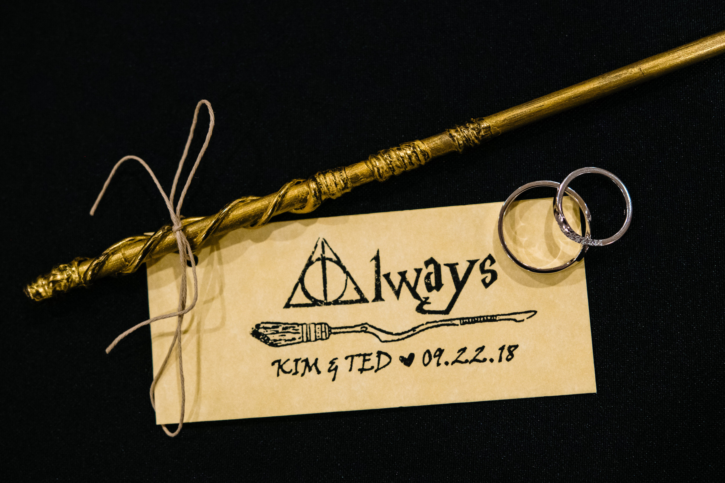 maryland-harry-potter-wedding.jpg