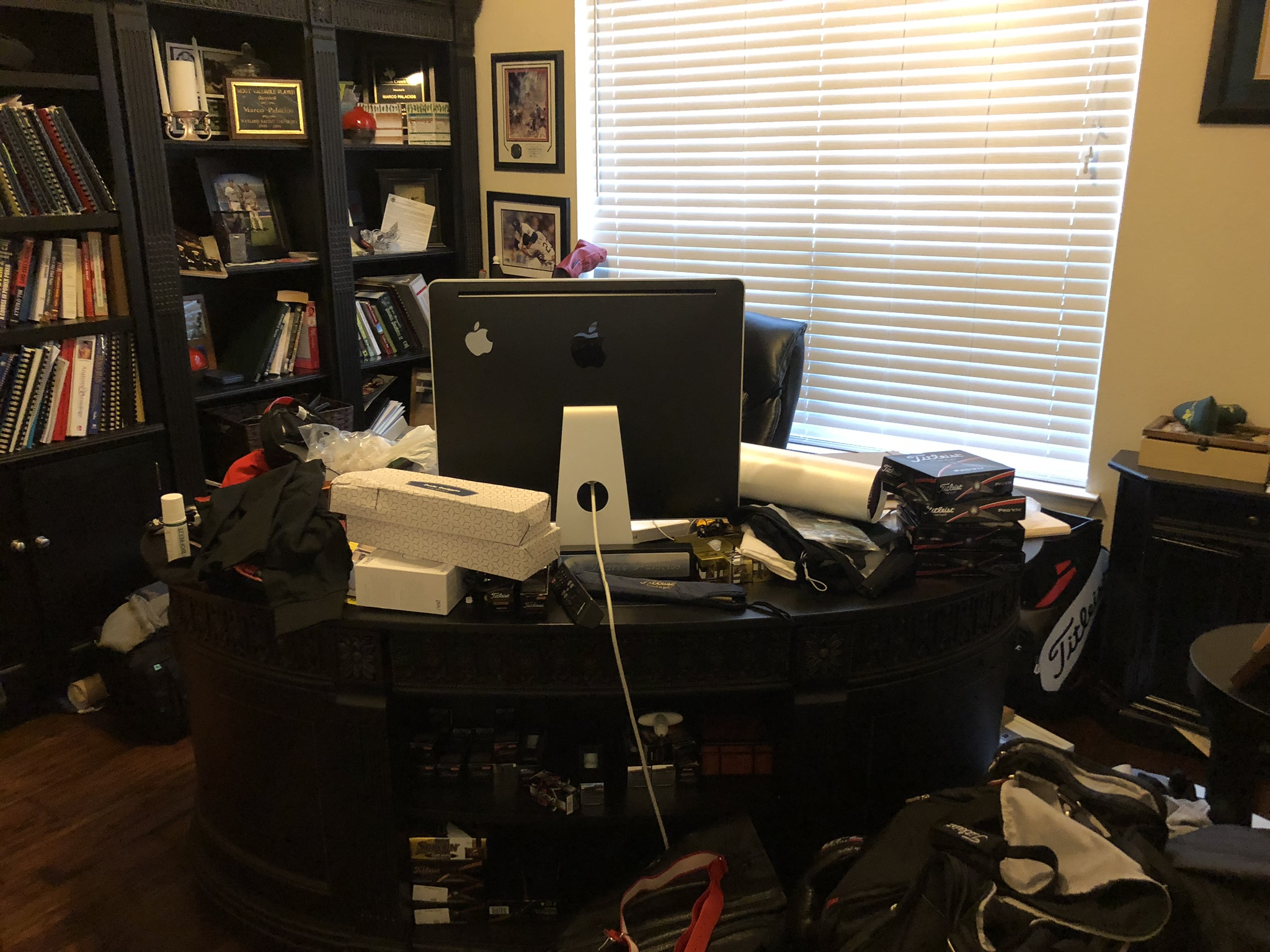 BEFORE - This chiropractor was not able to focus on work in this golf-centric home office.