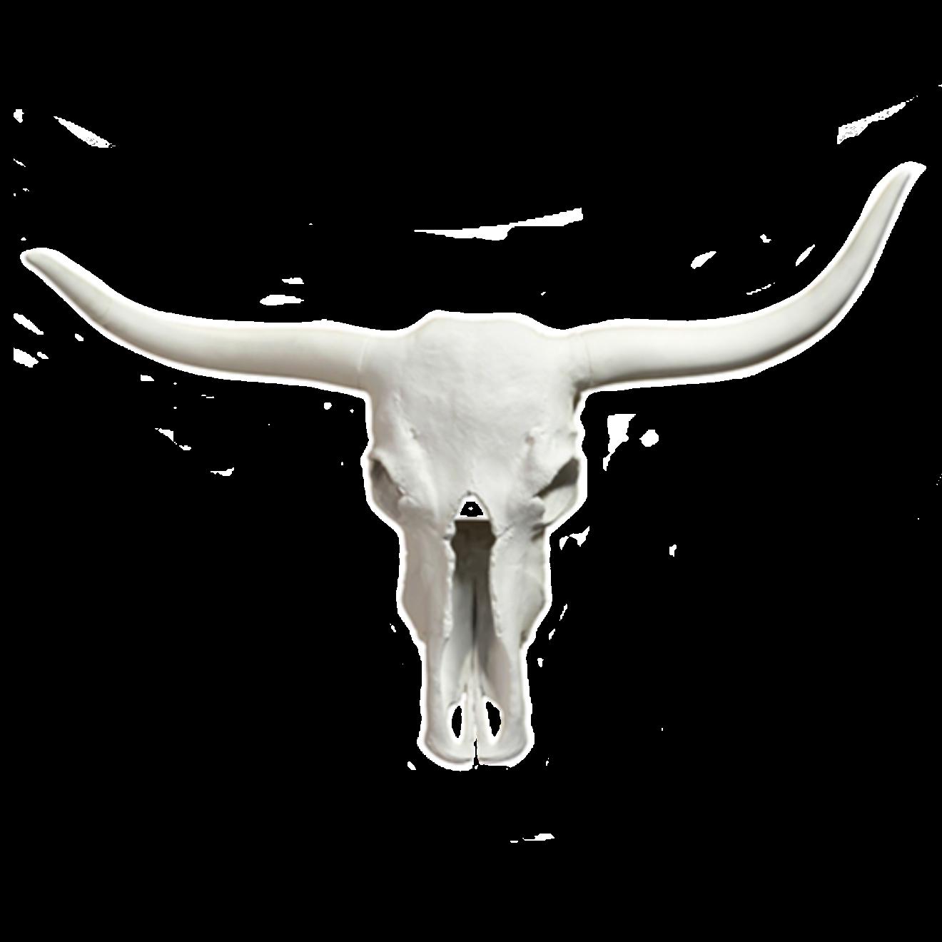 Ceramic Ox Head